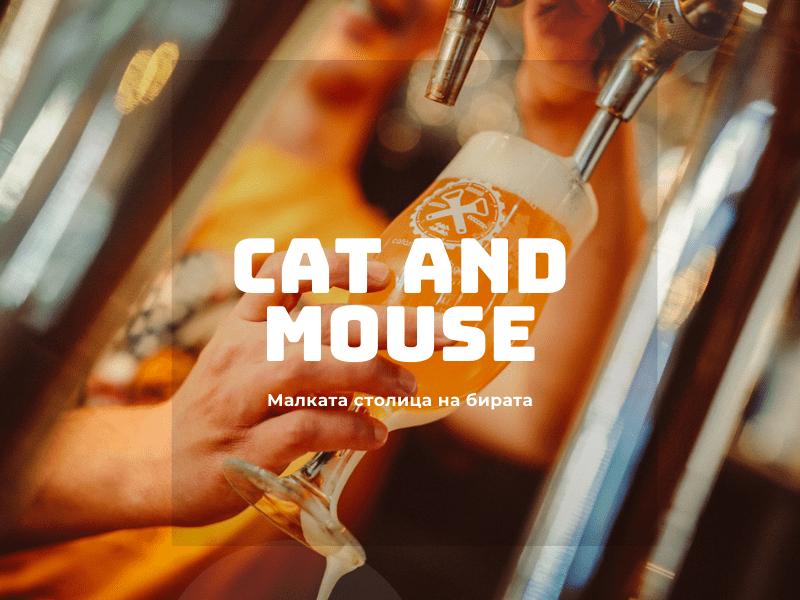 Котка и мишка Пловдив Капана